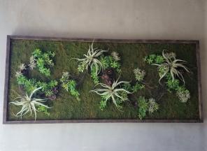 Green-Wall-Art