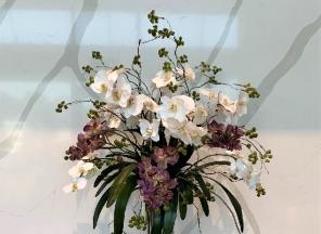 Multi-Orchid-in-Glass