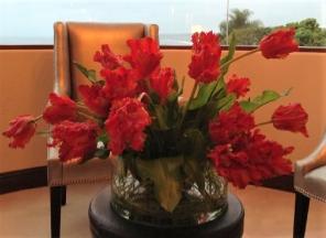 Red/Orange Parrot Tulip
