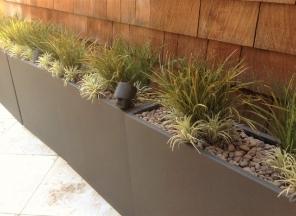 Grass/Air Plants in Zinc