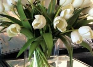 White Tulips in Water Garden