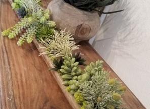 Succulents-Long-Trough